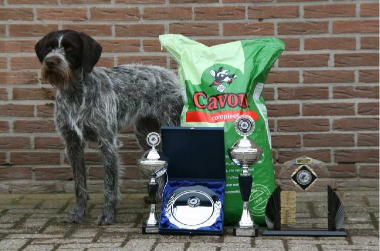 Cedra Clubwinner 2010