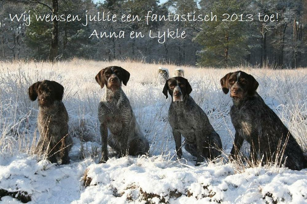 Nieuwjaarswens2013